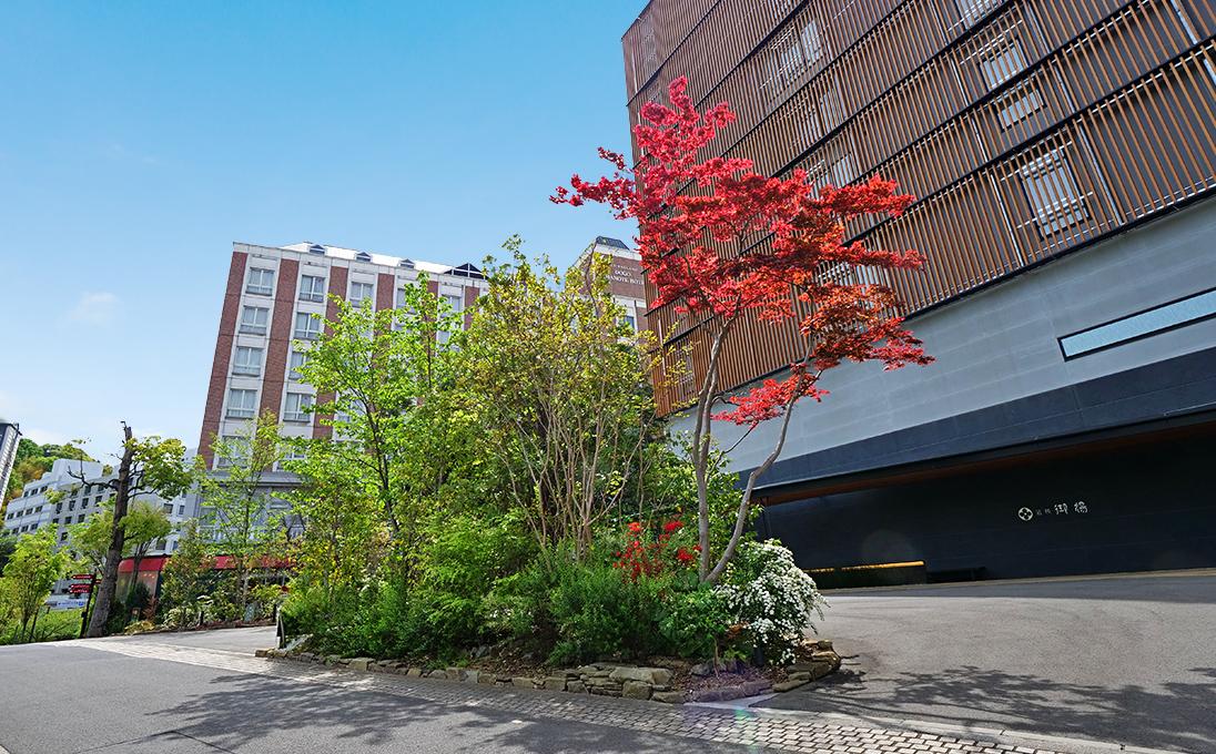 四季折々の花木でお出迎えとお見送りをする庭